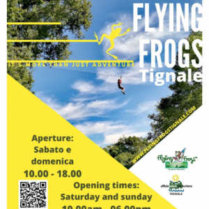 PARC D'ATTRACTION FLYING FROGS